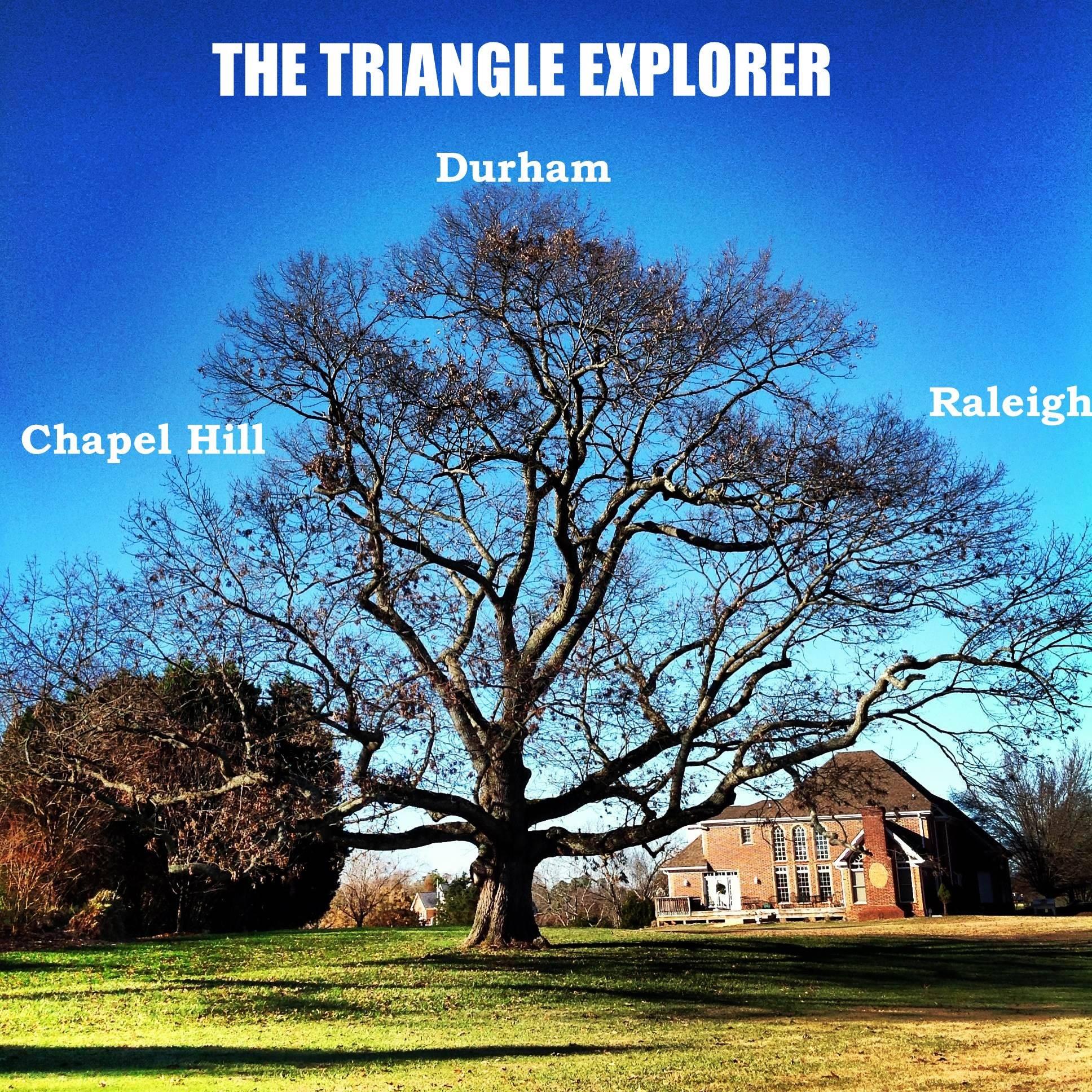 triangle explorer